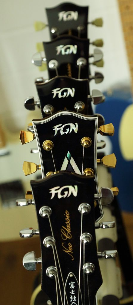 LKG Guitars FGN
